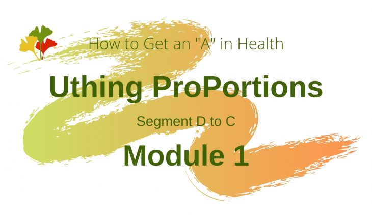 Uthing ProPortion Module 1