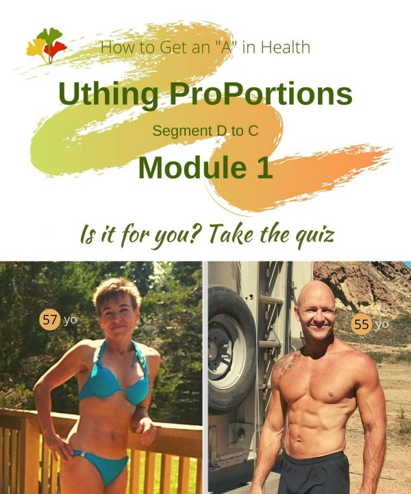 Uthing Proportions Course