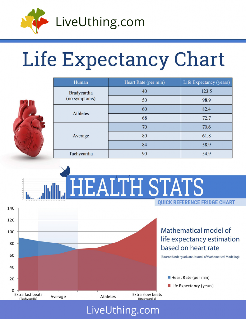 Life expectancy - chart