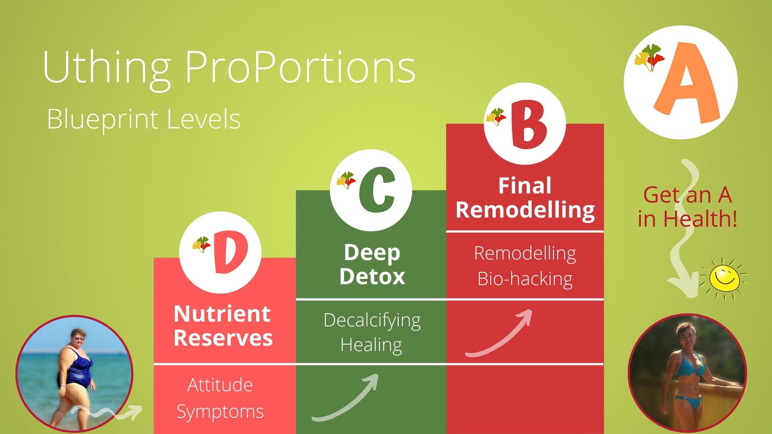 Uthing ProPortions Overview 1