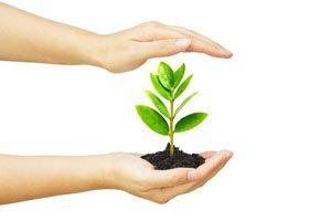 Can minimalist lifestyle promote good health